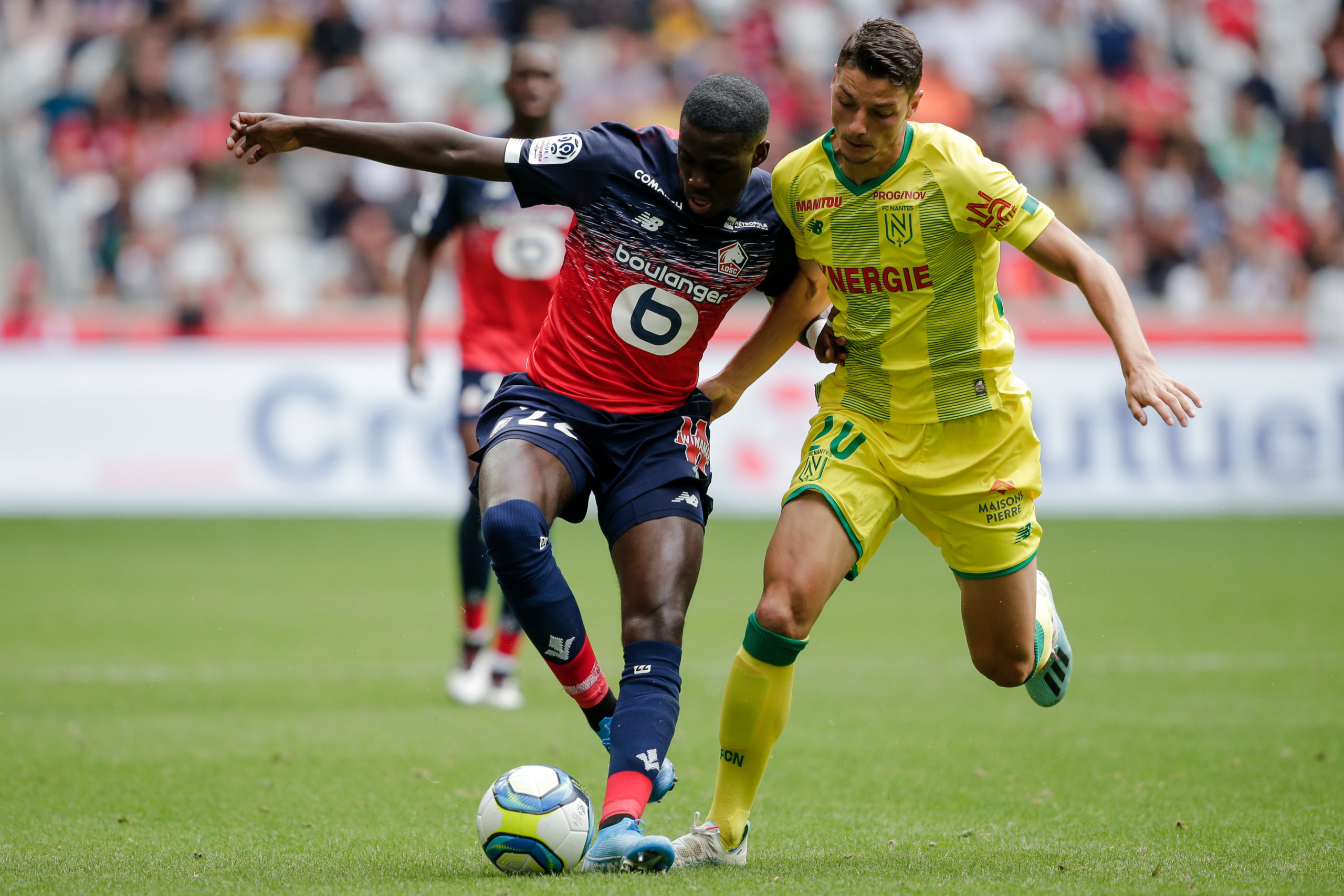 Timothy Weah playing for Lille